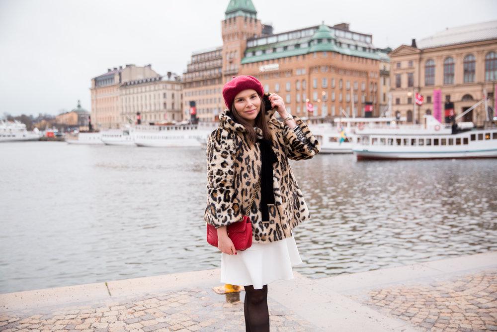 Angelica Aurell basket leopard.jpg